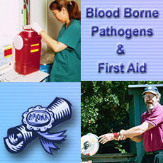 Blood Borne Pathogens First Aid